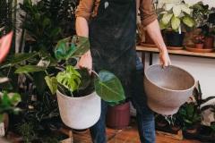 Larges choix de pots
